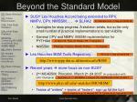 beyond the standard model