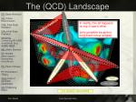 the qcd landscape