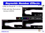reynolds number effects