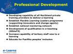 professional development13