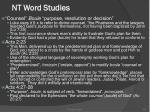 nt word studies