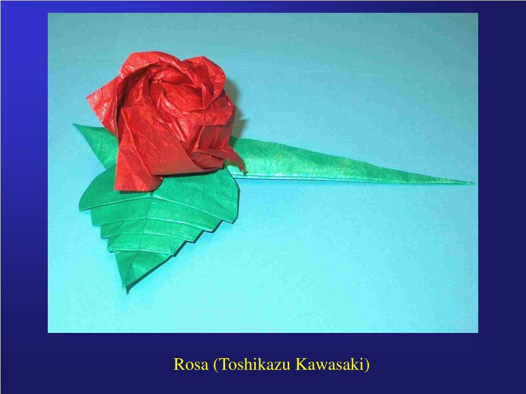 Rosa (Toshikazu Kawasaki)