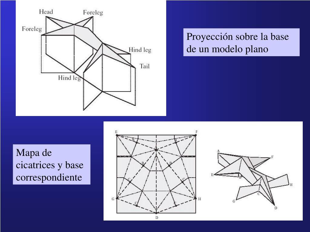 Proyección sobre la base de un modelo plano
