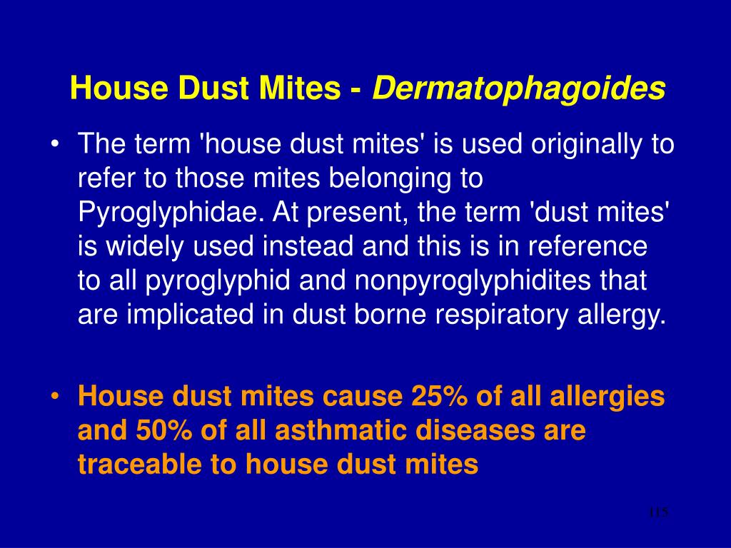 House Dust Mites -