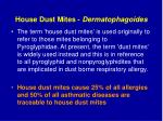 house dust mites dermatophagoides