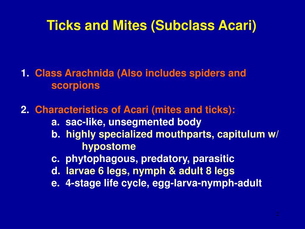 Ticks and Mites (Subclass Acari)