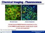 chemical imaging fluorescence