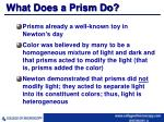 what does a prism do
