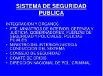 sistema de seguridad publica4
