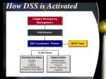 how dss is activated15