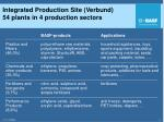 integrated production site verbund 54 plants in 4 production sectors