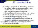 gt caracter sticas8