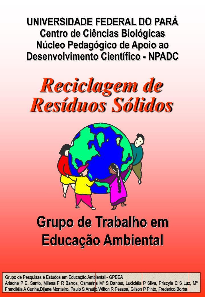 Grupo de trabalho em educa o ambiental