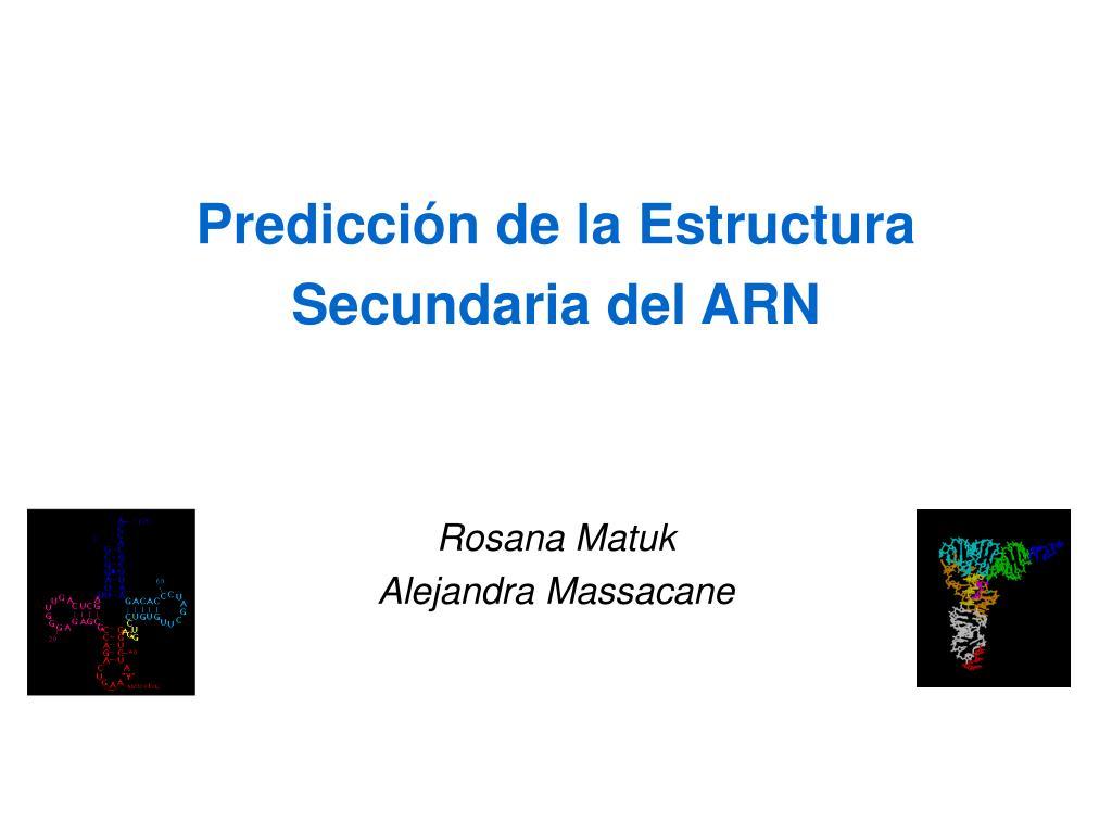 predicci n de la estructura secundaria del arn rosana matuk alejandra massacane l.