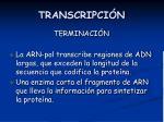 transcripci n16