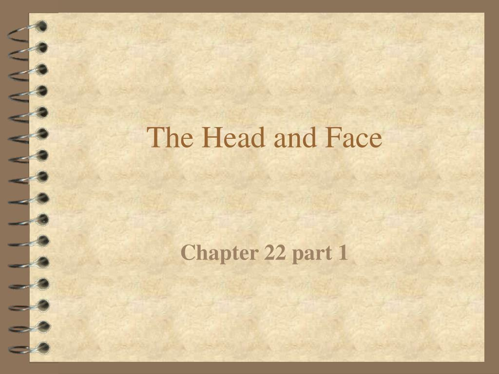 the head and face l.