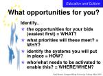 what opportunities for you