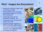 why images are everywhere