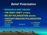 belief polarization
