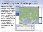 what exactly does opus projects do