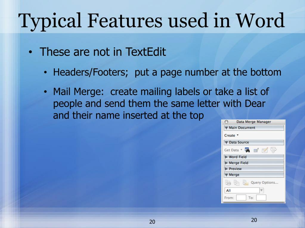 Typical Features used in Word