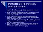 methotrexate neurotoxicity project purposes