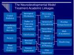 the neurodevelopmental model treatment academic linkages