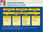 integrated cellular mechanisms of cvd