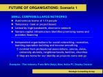 future of organisations scenario 1