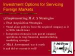 investment options for servicing foreign markets20