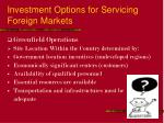investment options for servicing foreign markets25