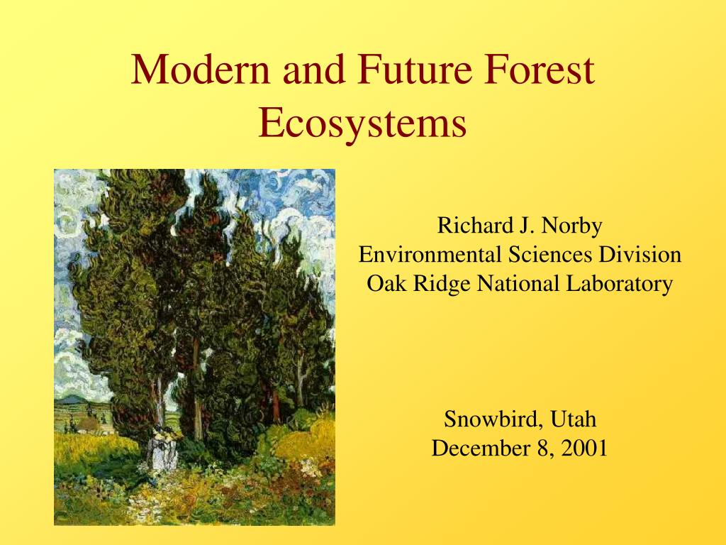 modern and future forest ecosystems l.