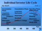 individual investor life cycle8