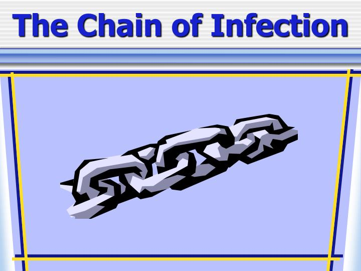 the chain of infection n.