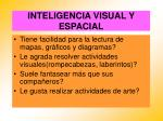 inteligencia visual y espacial54