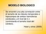 modelo biologico16