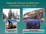 naturally occurring methane thermogenic petrogenic gas