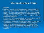 micronutrientes ferro