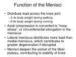 function of the menisci