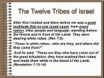 the twelve tribes of israel63