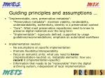 guiding principles and assumptions