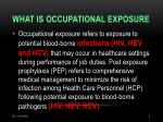 what is occupational exposure