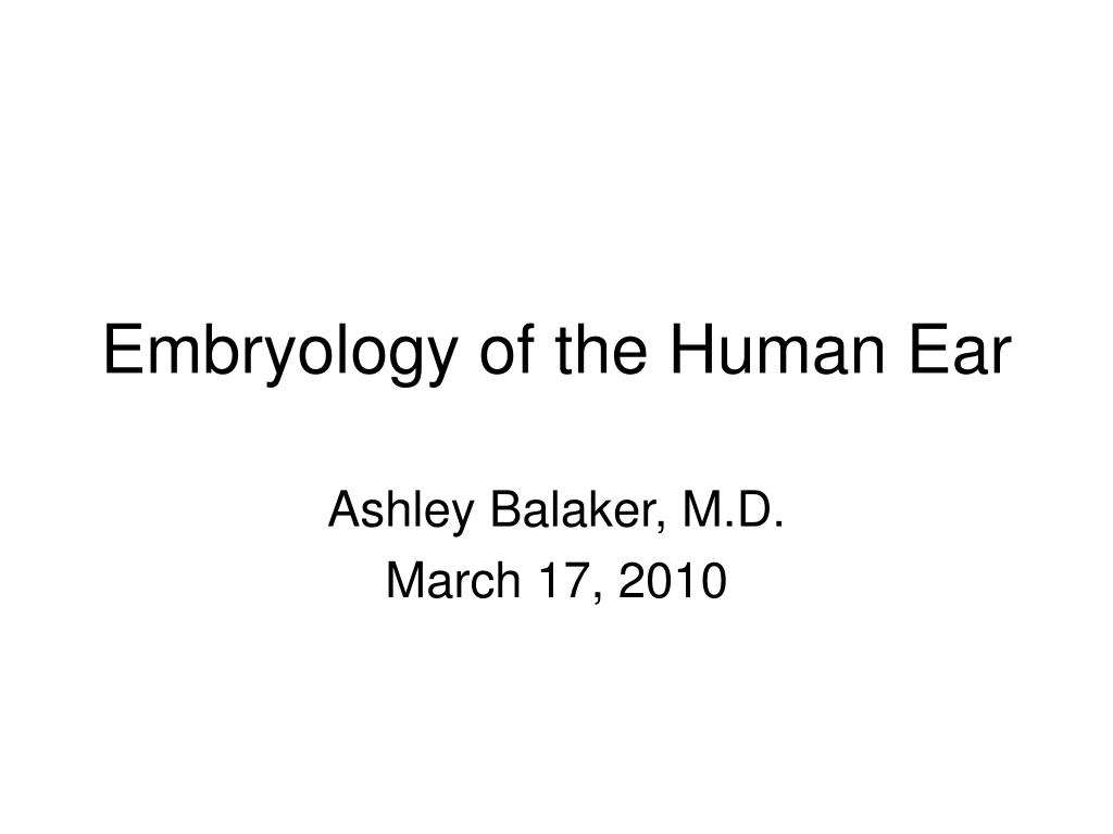 embryology of the human ear l.