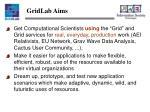 gridlab aims