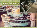 black tea processing1