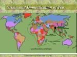 origin and domestication of tea