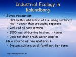 industrial ecology in kalundborg