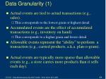 data granularity 1