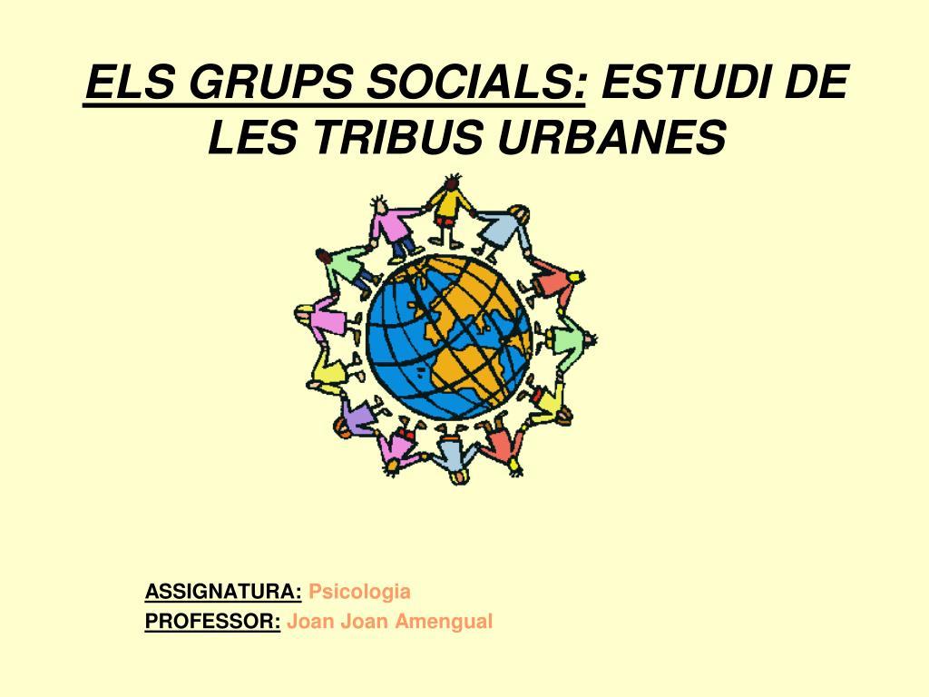 els grups socials estudi de les tribus urbanes l.
