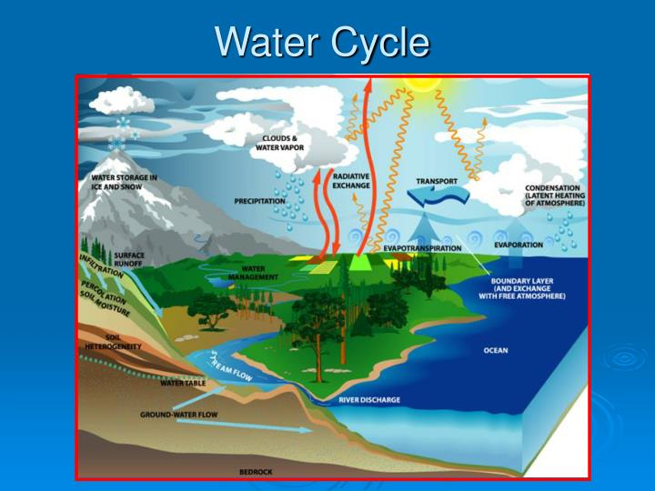 water cycle n.